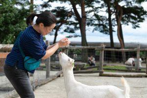 ちょっと遅めの夏休み、那須高原の旅(2018年)
